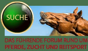 Horse-Gate Forum
