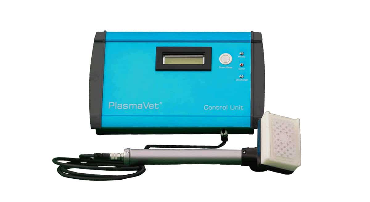 Neu: Behandeln von Wunden und Mauke mit PlasmaVet