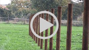 Poda baut sichere Zäune für Ihre Pferde