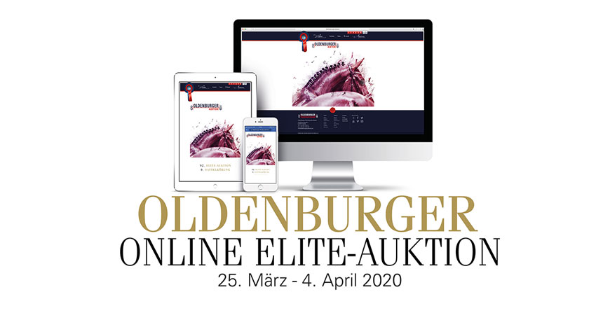 Oldenburger Online Elite-Auktion