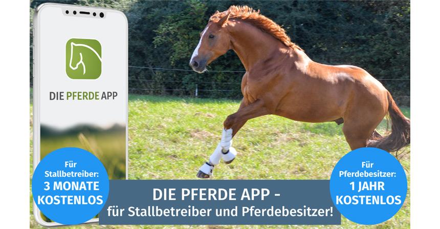 Die Pferde App
