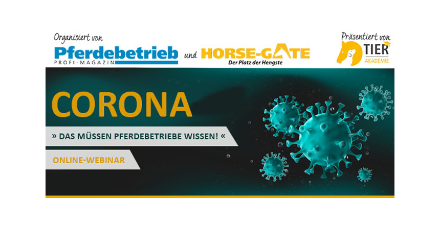Webtalk – Corona: Das müssen Pferdebetriebe wissen!