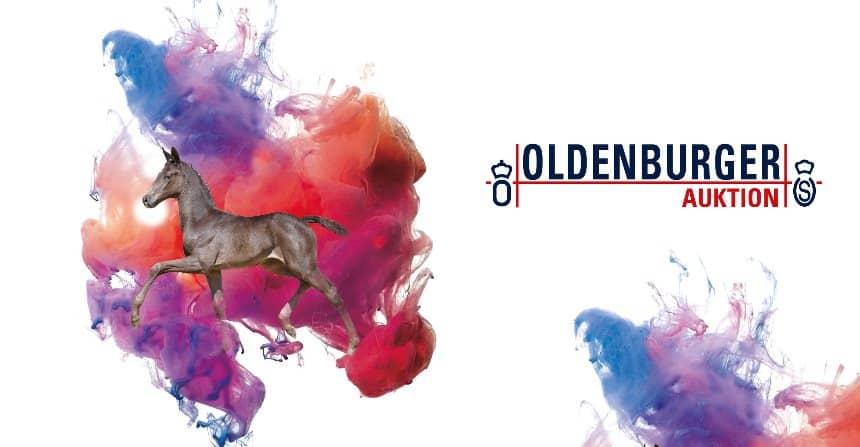 Oldenburger Pferdezuchtverband