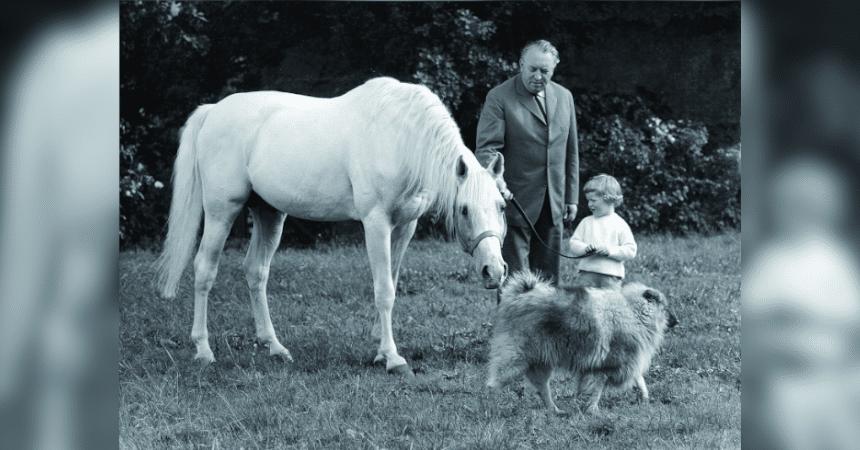Don Schufro und sein Vornholzer Mutterstamm (Teil 1)