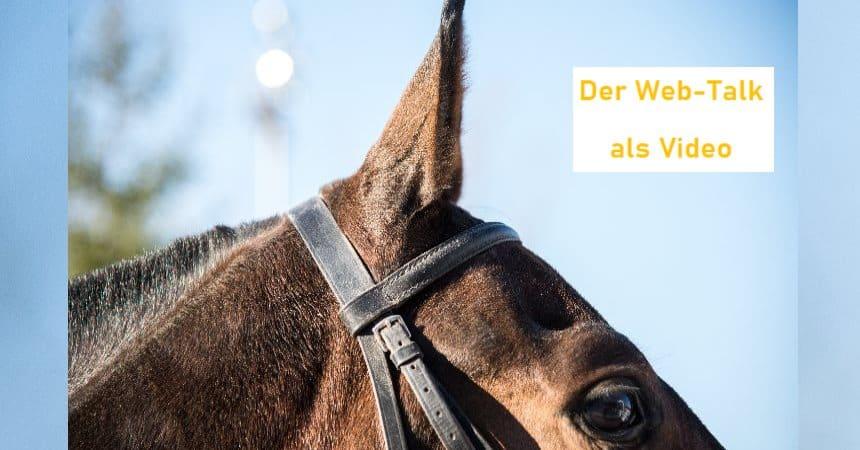 Rückschau: Webtalk Pferdevermarktung