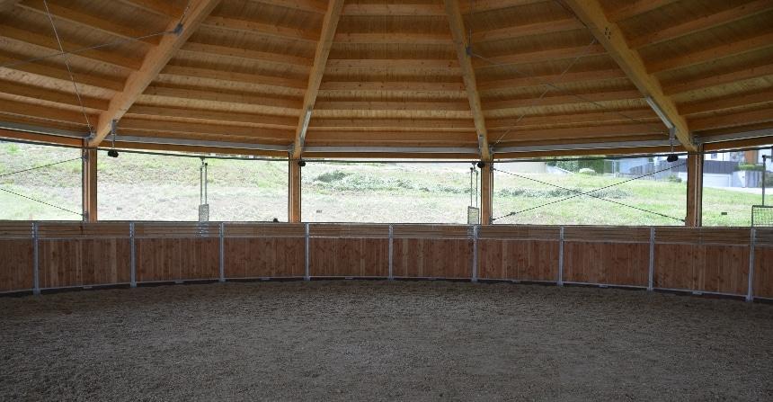 Führanlage außen, Longierzirkel innen: So ist der Platz für zwei Trainingsmöglichkeiten ideal genutzt.
